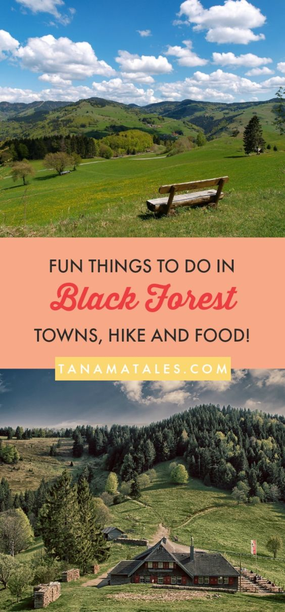 Things to do in the #BlackForest, #Germany – Travel tips and ideas - The Black Forest region is actually made up of not just forest, but towns and cities as well, so for the eager explorer, it offers a superb mix of hiking and trailing options as well as delicious restaurants and towns to enjoy in between hikes. Here are some of our favorite ways to spend time in the Black Forest.