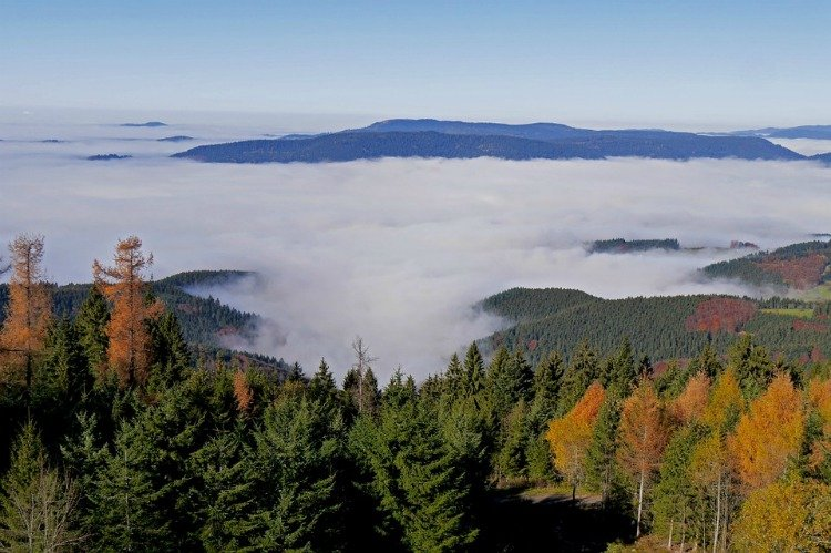 Things to do in the Black Forest Region, Germany, Mountains