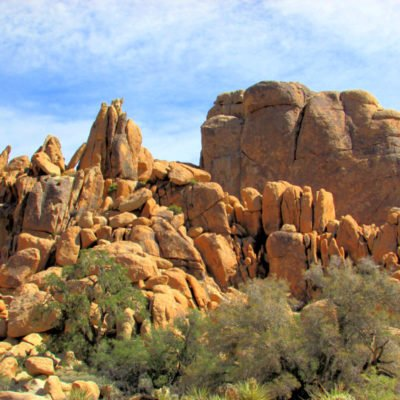 Top Things to Do in Joshua Tree National Park