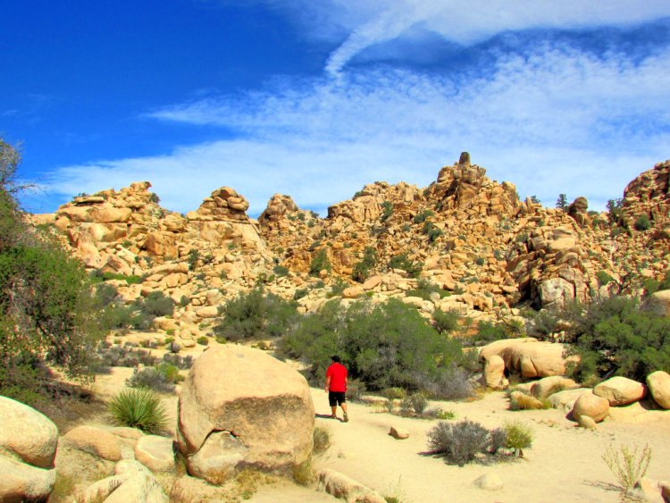 Hidden Valley, Things to Do in Joshua Tree National Park, California