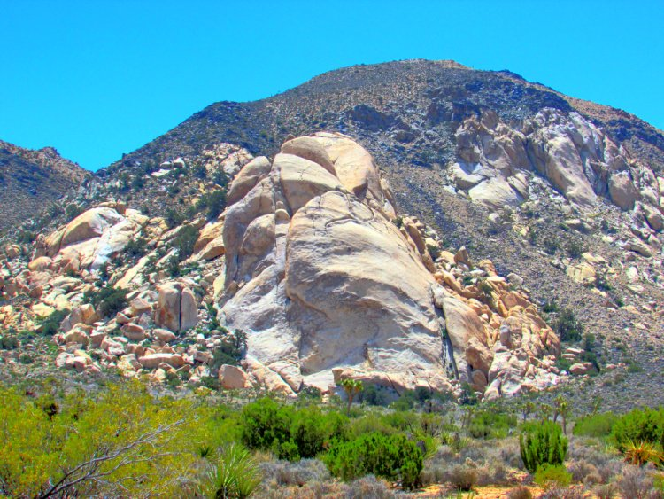 Saddle Rock, Things to Do in Joshua Tree National Park, California