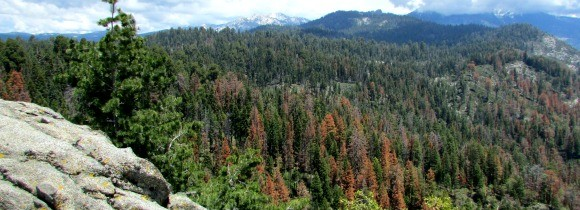 Sequoia National Park: Moro Rock