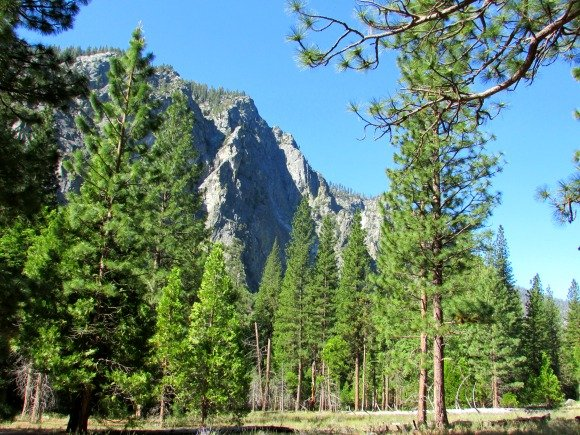 Zumwalt Meadow, Kings Canyon National Park, California