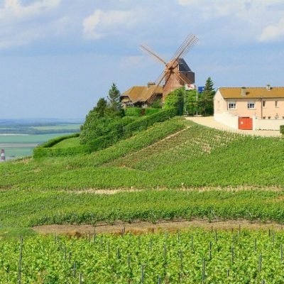Champagne: 9 Reasons to Visit this Region in France