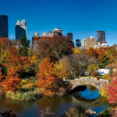 5 Tips for Exploring Central Park, New York City