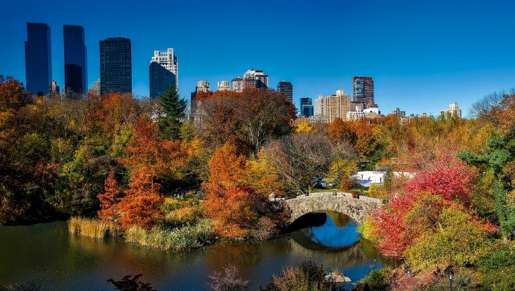 5 Tips for Exploring Central Park in New York City