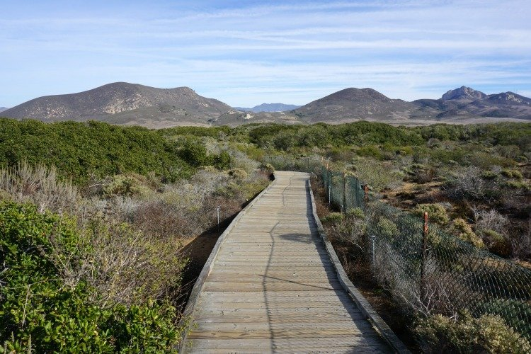 Elfin Forest Natural Area, Morro Bay Hiking, Hiking Morro Bay