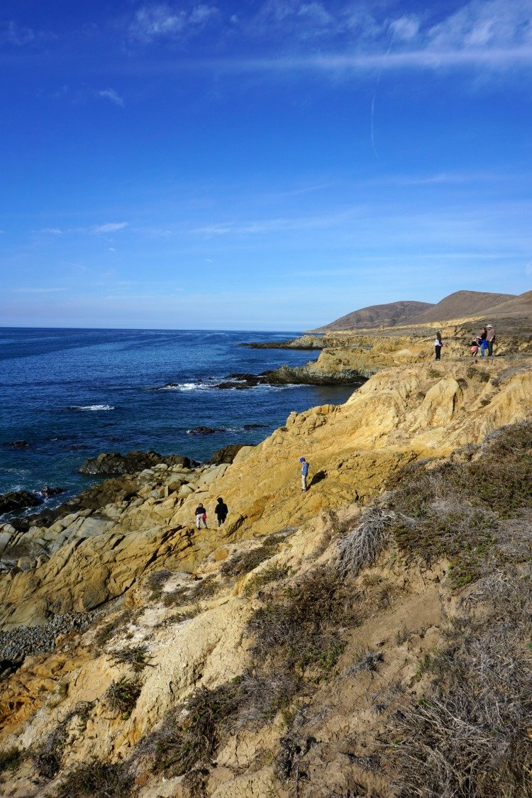 Harmony Headlands State Park, Things to do in Cayucos Ca