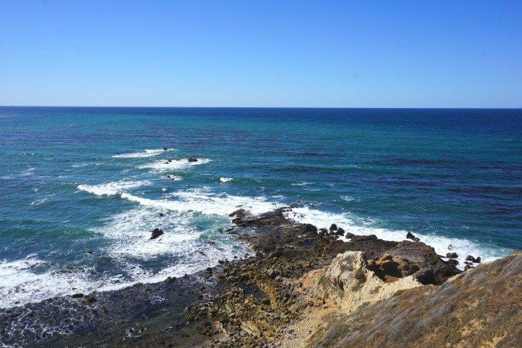Bluff Cove,