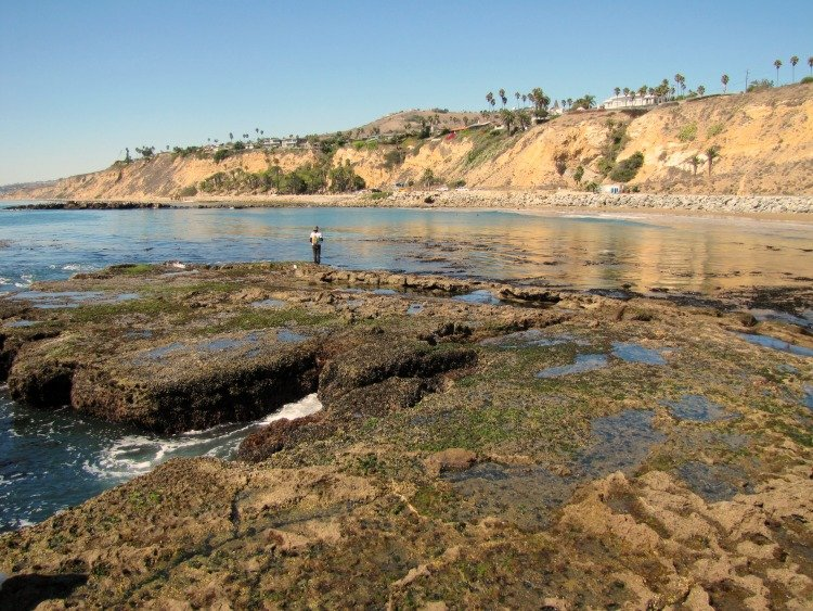 White Point, Palos Verdes Beaches