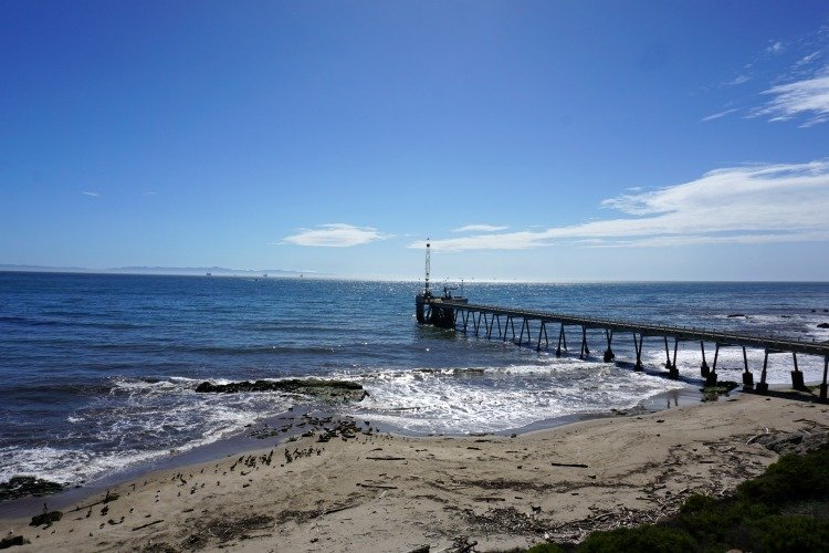 Things to do in Carpinteria, Carpinteria Bluffs Preserve, Seal Rookery, Casitas Pier