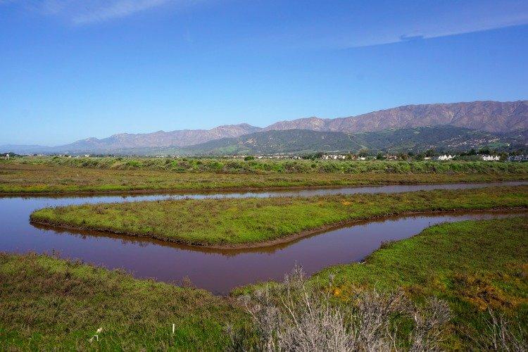 Carpinteria Salt Marsh, Things to do in Carpinteria ca