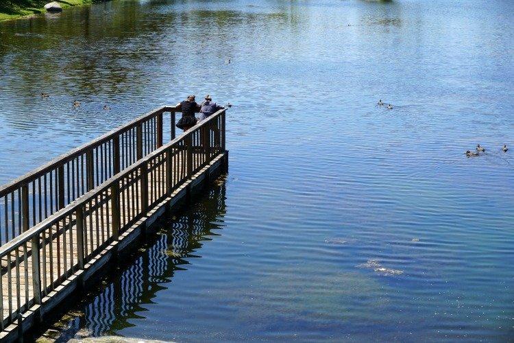 Santee Lakes Fishing