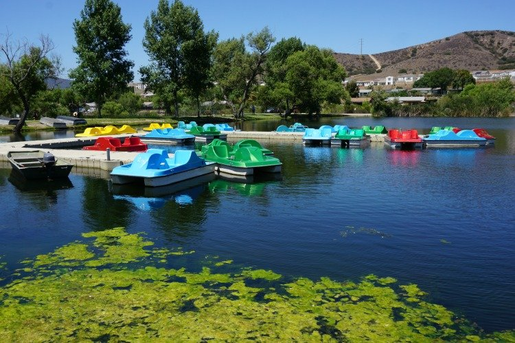 Santee Lakes Campground, Pedal Boats available for rent at the Santee Lakes Recreation Preserve, San Diego, California