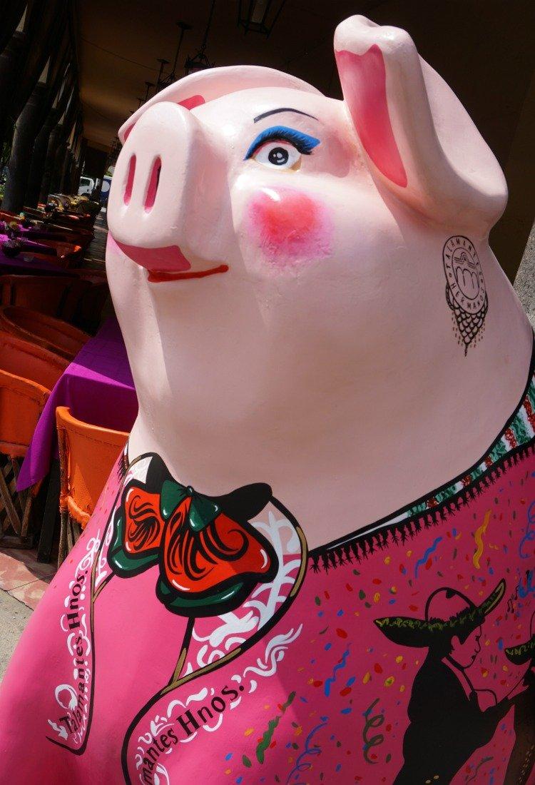 Mariachi Pig, Tlaquepaque, Jalisco