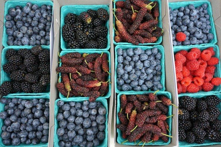 Berries for sale at the Manhattan Beach Farmers Market