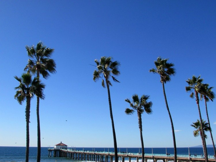 Manhattan Beach Pier surrounded by palms, Manhattan Beach things to do