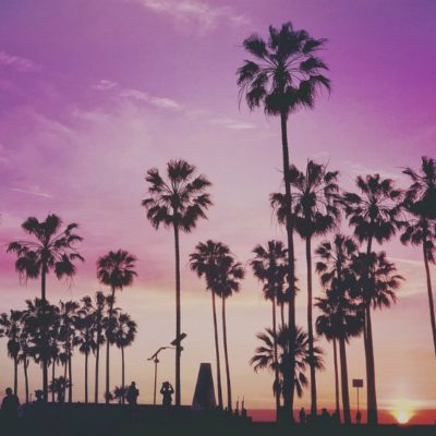 Things to Do in Venice Beach, California by a Local