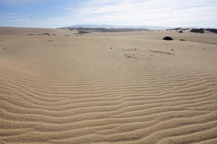 Sand dunes near Pismo Beach, California