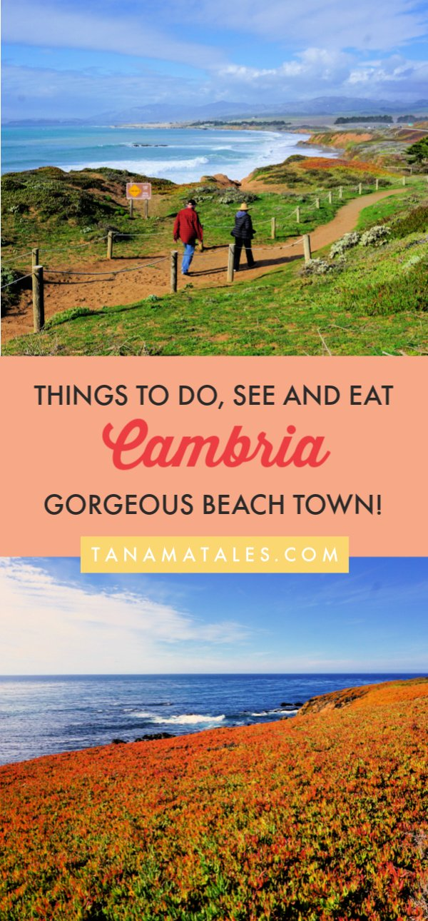 Things to do in #Cambria, #California – Cambria, a small coastal town in San Luis Obispo County, is known for its Moonstone Beach, European-style village, natural preserves, and its proximity to Hearst Castle, San Simeon and Big Sur.  Get ready because I am spilling the beans on the best things to do in Cambria, a true gem of the Central Coast.  Plus, I have tons of restaurants recommendations.  #roadtrip #beachtown #PCH #CentralCoast