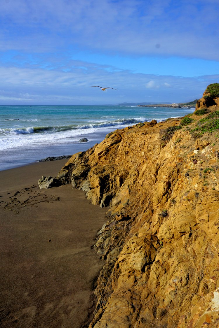 Beach at the mouth of the San Simeon Creek, San Simeon, California