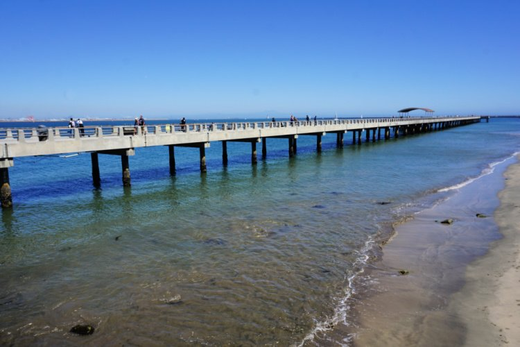 Cabrilli Beach Pier, San Pedro, California, Things to do in San Pedro