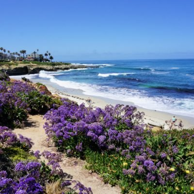 One Day in San Diego: Itinerary for First-Time Visitors