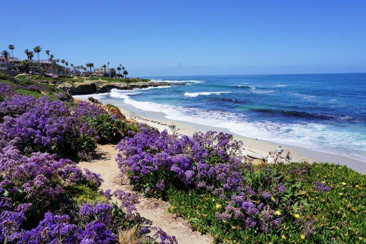 View of coastal La Jolla, California, One Day in San DIego