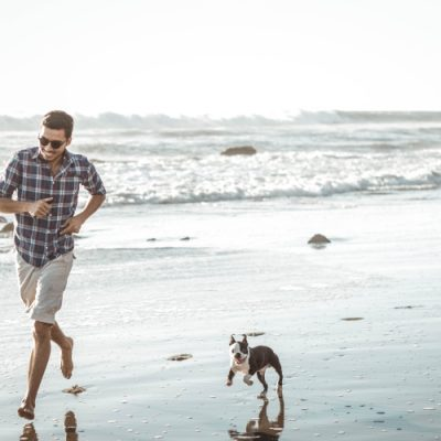 Incredible Beaches for Dogs in Los Angeles