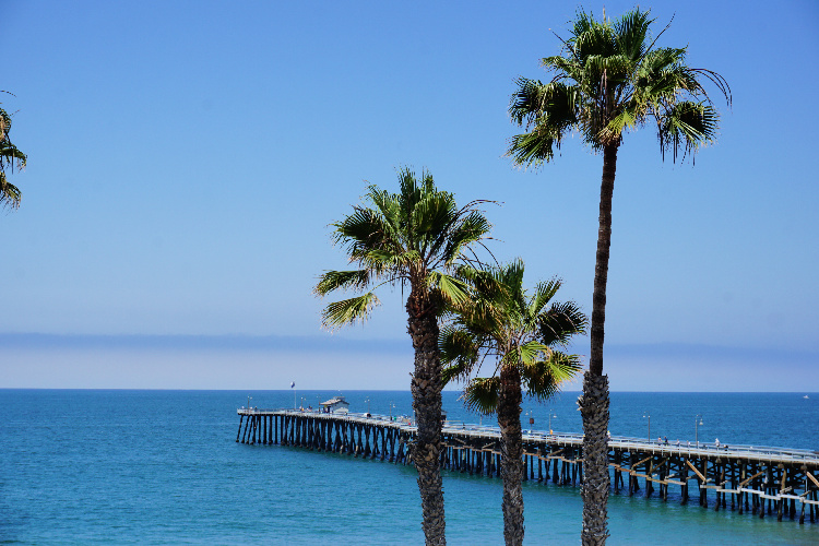 San Clemente Pier and Palm Trees